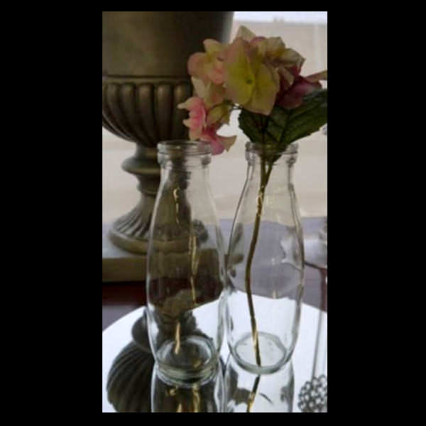 Glass Vases for hire